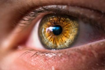 A close up of a hazel brown eye