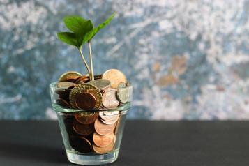 Social care budget
